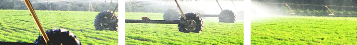 banner-agri